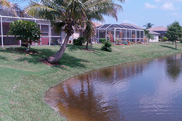 Another excellent lake bank restoration project Naples Florida.